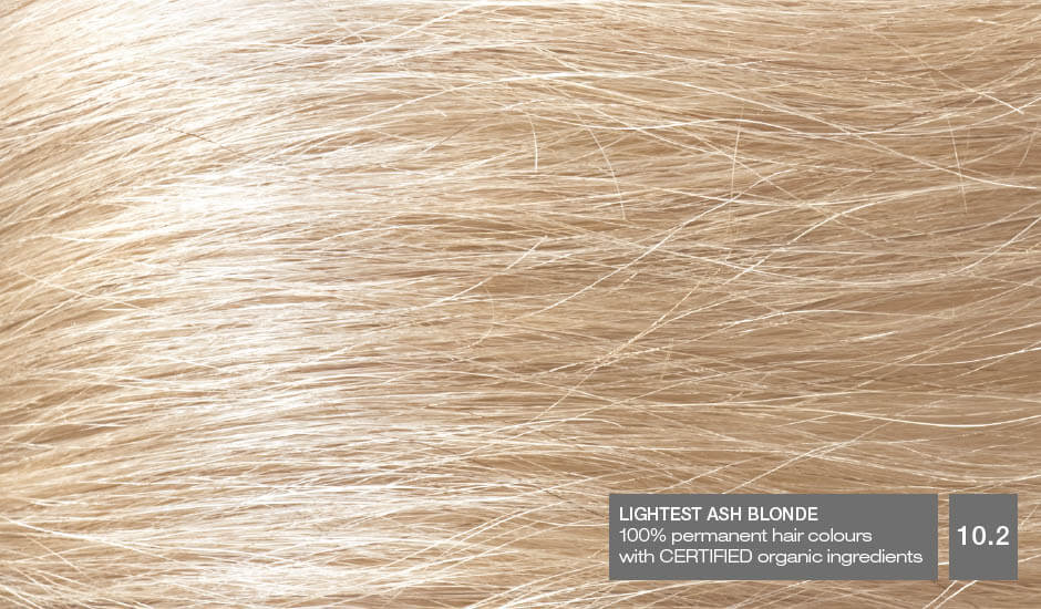 Lightest Ash Blonde 10.2_Hair